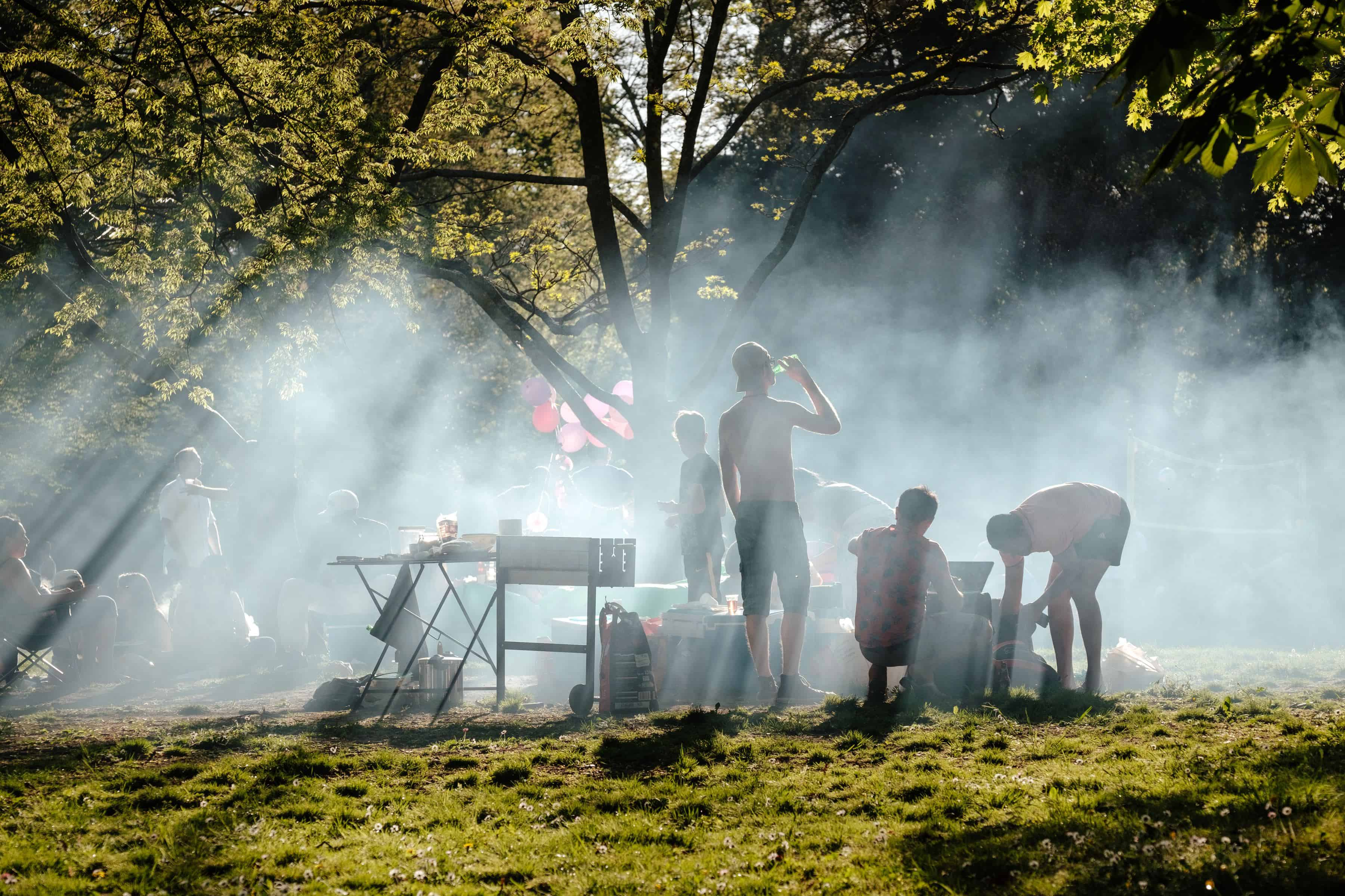 people barbecuing under green tree