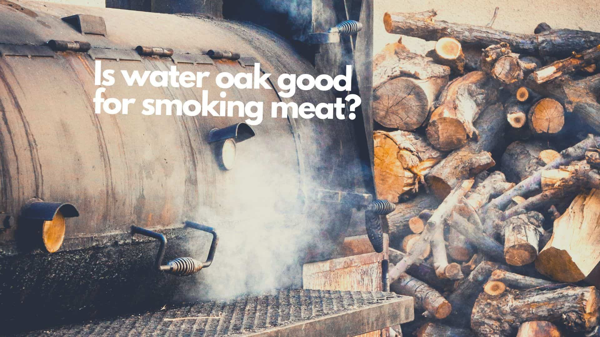 Can you smoke meat with water oak? Yes & look out for these tips