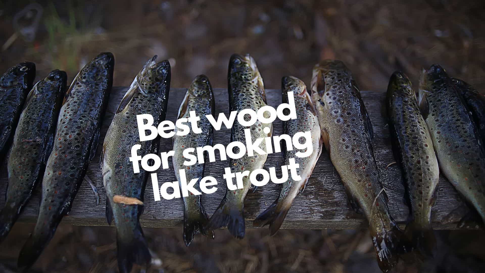 Best wood for smoking lake trout | 6 top options & 2 to really avoid